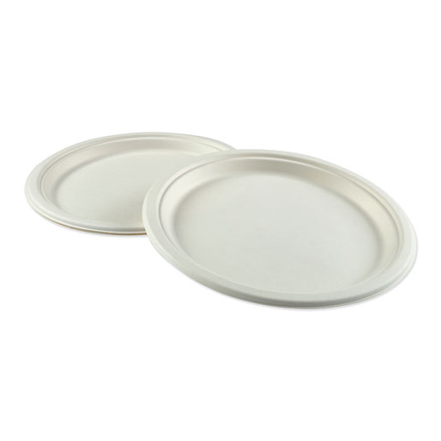 "Bagasse Plate 10"" White Compostable 500/cs"