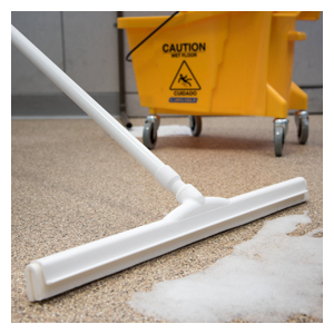 02  White 24In Spec Color-Coded Squeegee Ea